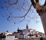 Foto: Municipio de Albaida