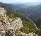Foto Parque Natural de La Tinença de Benifassà