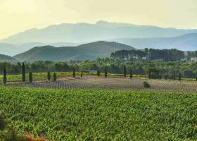 Toscana Valenciana Terres dels Alforins