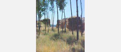1830_es_imagen2-fichamonumentos_chiva_castillo2.jpg