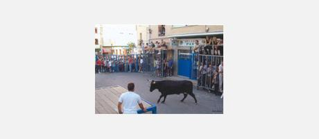 Img 1: FIESTAS WITH YOUNG BULLS, in CASTALLA
