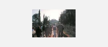 3827_es_imagen2-fiesta_marededeu2.jpg