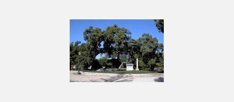Img 1: Derramador Park