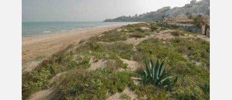 Foto: Playa Dossel