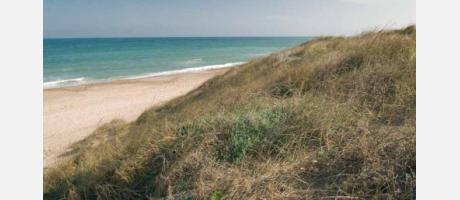 Foto: Playa de El Saler