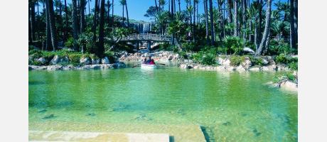 Alicante Parque El Palmeral