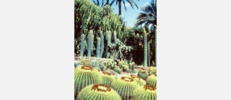 49_es_imagen-jardin_cura12042011.jpg