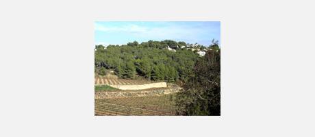 Img 1: Paisaje Protegido de Les Sorts