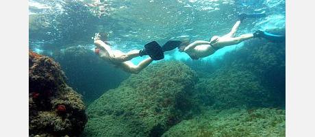 Img 2: Submergeix-te en les aigües de Benidorm!