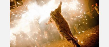 Fiesta medieval del fuego