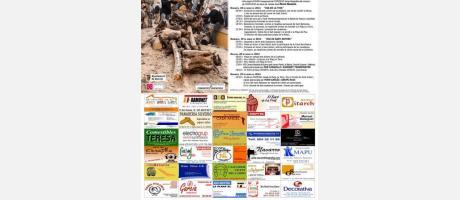 Cartel oficial de las fiestas de San Antonio en Borriol 2014