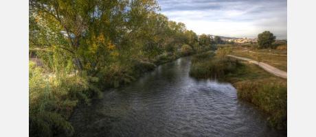 Río Turia de día