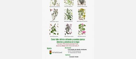 Taller de plantas silvestres y aromáticas