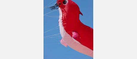 Un enorme pájaro