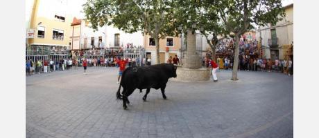 Festejos Populares en Honor a San Roque Castalla 2015