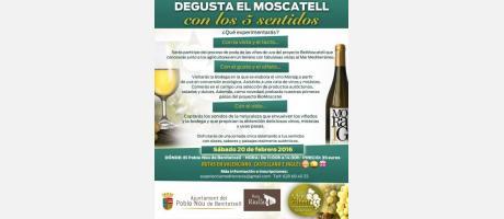 Moscatell 5 sentidos 2016 EPNDB