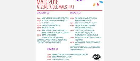 Cartel Fiestas Juventud Atzeneta