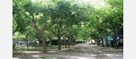 Bejis_Camping_Los_Cloticos_Img2