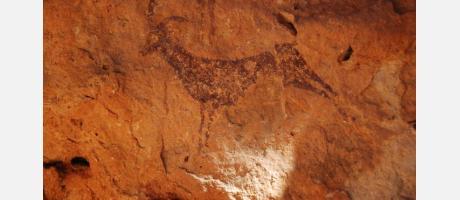 Detalle Cueva Araña Bicorp