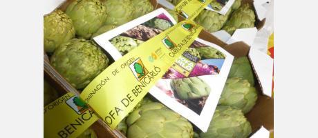 Fiesta de la Alcachofa de Benicarló 6