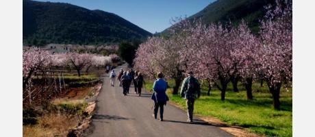 Caminatas senderistas en familia en Alcalalí