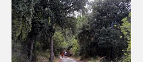 Ruta senderismo Onda