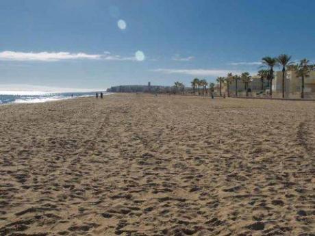 Img 1: Playa del Saladar