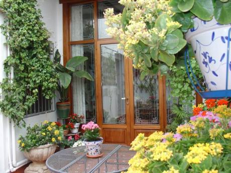patio Casa Ca-Olivares