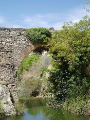 Img 1: Puente Real y Concegil