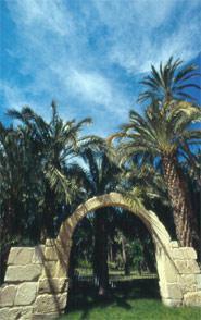 Parque Municipal, Elche