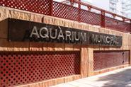 Aquaruim