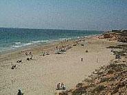 Img 1: Playa Mil Palmeras