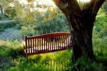 Le gîte rural Shariqua, une tranquillité agréable à Jérica