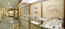 Musée Archéologique et Paléontologique de Novelda
