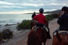 Castelló i cavall tenen un nom: Maestrat Eqüestre