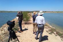 Contempla el mai vist amb Birdwatching Spain