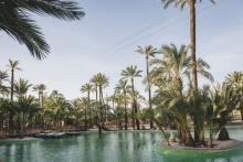 Elche Palmeral Aventuras, a park with a mark for real fun