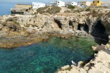 Viaja a la isla de Tabarca con Tabarbus