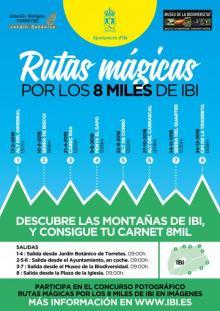 Rutas Mágicas 8 miles
