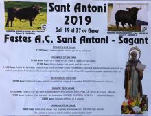 Toros Sant Antoni. Sagunt 2019