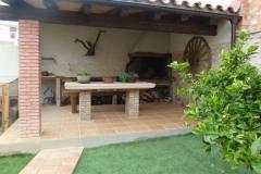 les oliveres milenaries de la jana