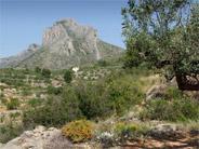 Les Sierras de Benicadell et d'Agullent