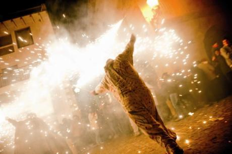 The Santantonada in Forcall, an ancestral festival of fire