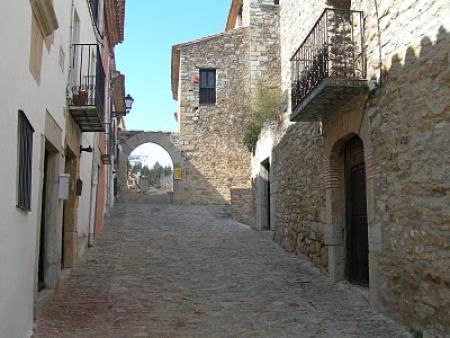 Fiestas en honor a la Virgen de la Asunción y San Roque en Xert
