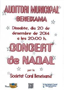 Concierto de Navidad de Beneixama 2014