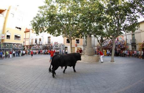 Festejos Populars en Honor a Sant Roc Castalla 2015