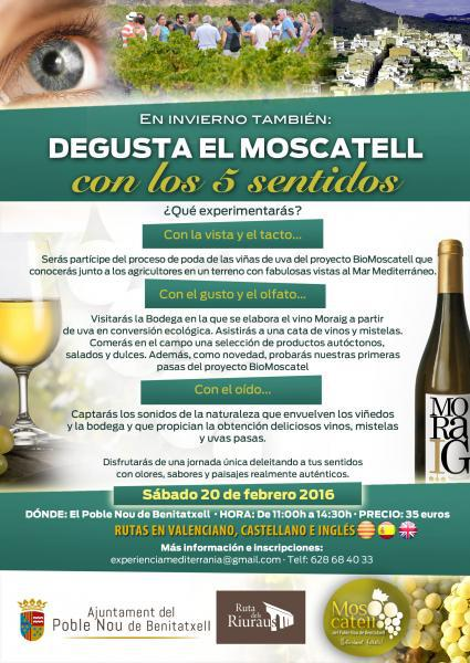 Taste Moscatell wine with your 5 senses