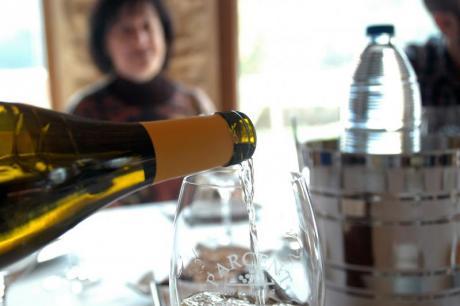 Cata de vinos blancos moscatel en Parcent