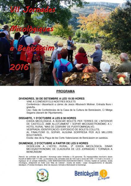 VII Jornadas Micológicas en Benicàssim