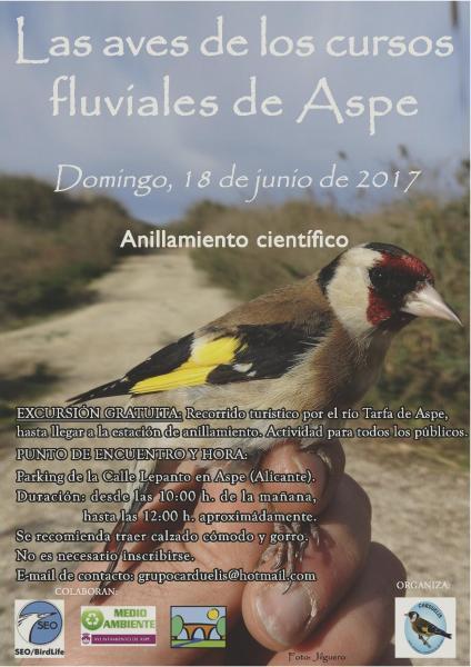 EXCURSIÓN: ANILLAMIENTO CIENTÍFICO DE AVES EN LOS CURSOS FLUVIALES DE ASPE